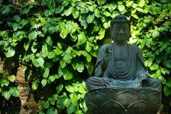 140518東慶寺イワタバコ