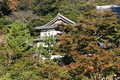 201108円覚寺紅葉4