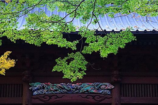 191204妙本寺