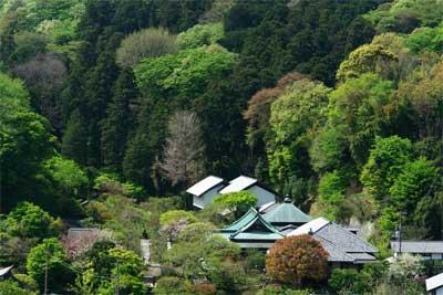 070414東慶寺遠望