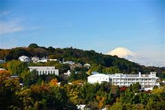 161125円覚寺富士山