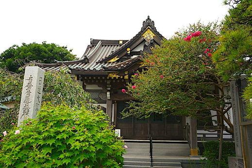 200901妙隆寺サルスベリ