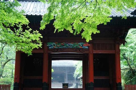 120515妙本寺新緑1