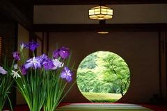 140623明月院丸窓