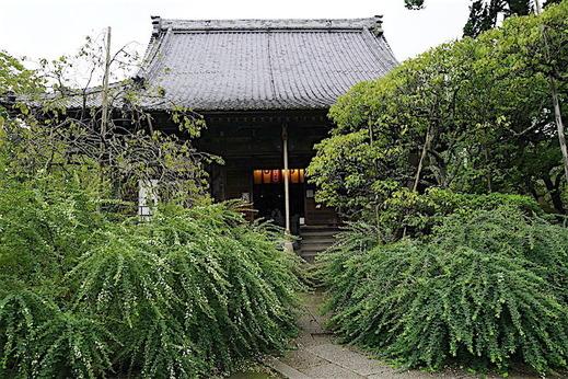 160914宝戒寺ハギ2