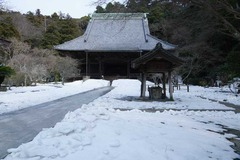 140219妙本寺残雪
