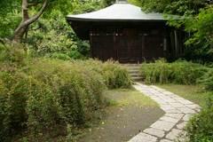 090919浄光明寺ハギ