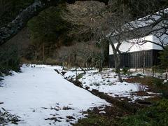 130121東慶寺雪