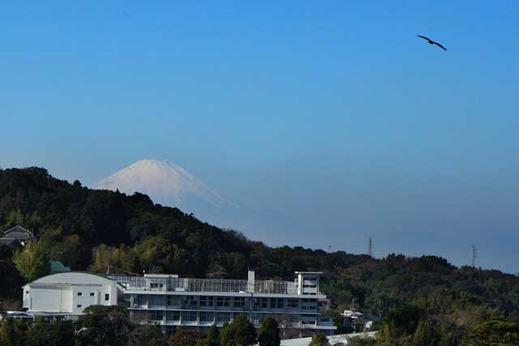 121120円覚寺富士山