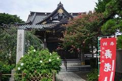 190824妙隆寺フヨウ2