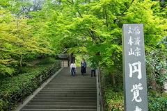 190422円覚寺新緑