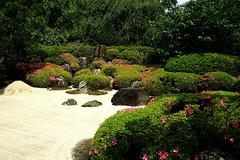 200608明月院枯山水庭園