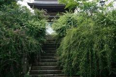 130911海蔵寺ハギ1