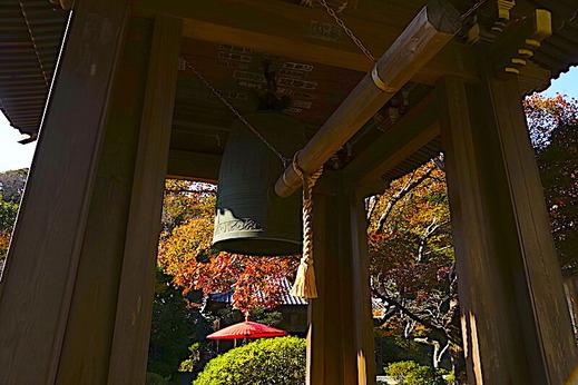201116海蔵寺紅葉2