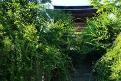 130828海蔵寺ハギ