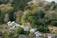 110410東慶寺遠望
