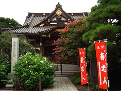 150819妙隆寺サルスベリ