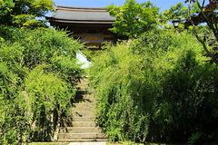 160901海蔵寺ハギ