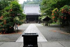 160713妙本寺ノウゼンカズラ2