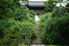 190829海蔵寺ハギ1