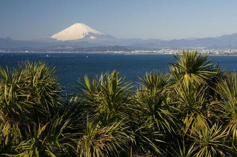 090125江ノ島からの富士山