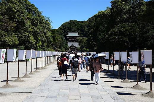 160807鶴岡八幡宮ぼんぼり祭