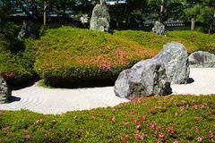 190523光明寺サツキ