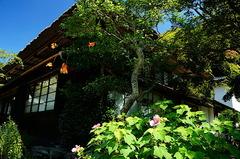 180826海蔵寺