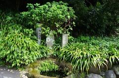 150813海蔵寺 底脱の井