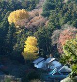 051210東慶寺遠望