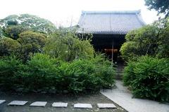 130906宝戒寺ハギ1