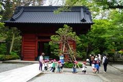 140501妙本寺新緑2