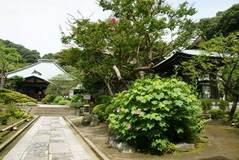 090801海蔵寺風景