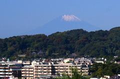 161106安国論寺富士山
