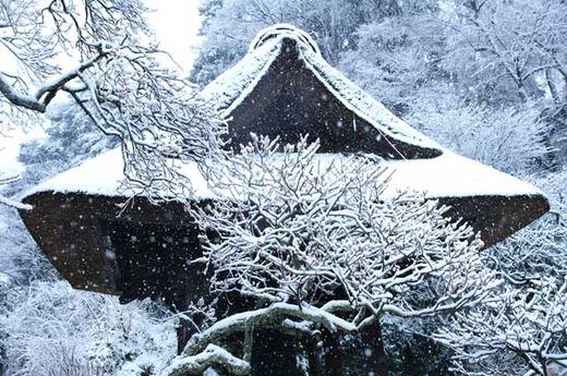 120229東慶寺雪