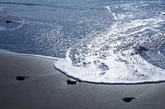 120107七里ガ浜