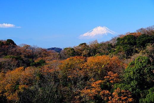 171210半僧坊 富士山
