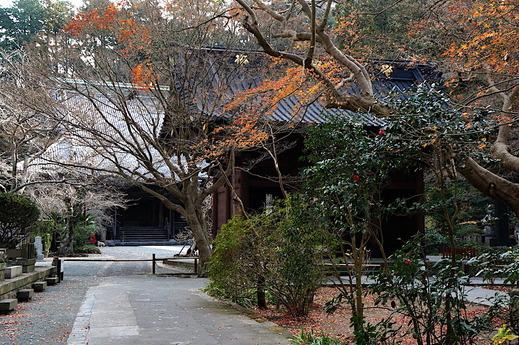 210106妙本寺冬景色