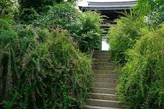 150916海蔵寺ハギ2