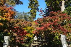 201114円覚寺紅葉1