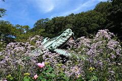 161006海蔵寺シオン2