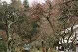 060219東慶寺