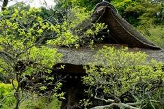 120420東慶寺新緑