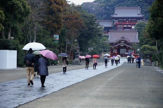 150115鶴岡八幡宮