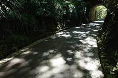 121019鎌倉文学館トンネル