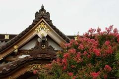 100814妙隆寺サルスベリ