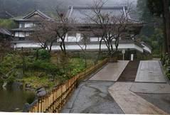 100306円覚寺雨