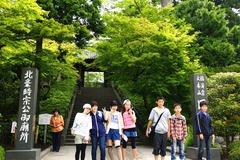 140528円覚寺新緑