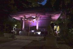 170823甘縄神明神社長谷の灯かり2