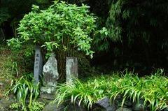 110921海蔵寺底脱の井